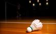 Badminton - ilustračný obrázok